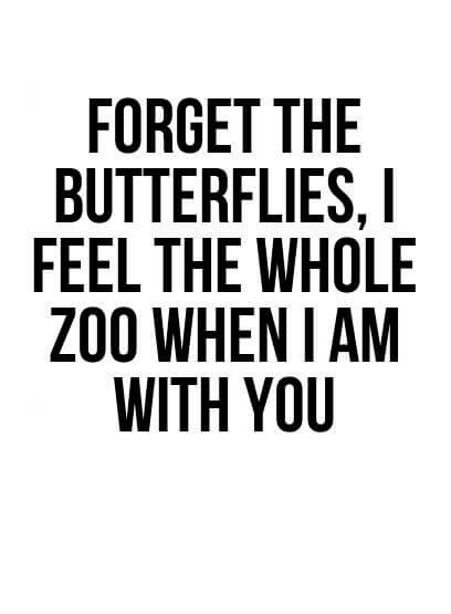 Love Quotes: Forget the butterflies, I feel the whole zoo when I am with you.