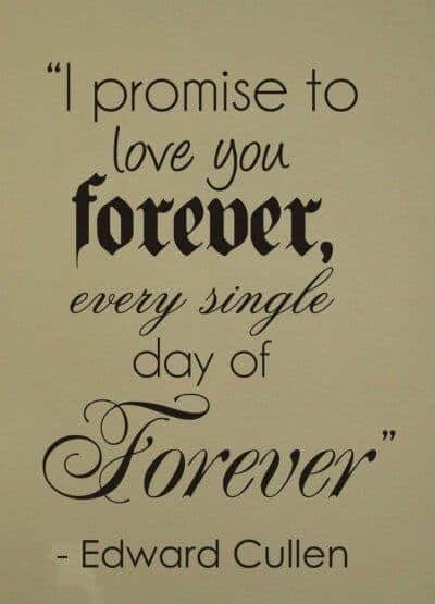 I promise to love you FOREVER every single day of Forever.
